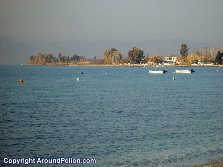 Agria - Pélion Magnésie - Grèce